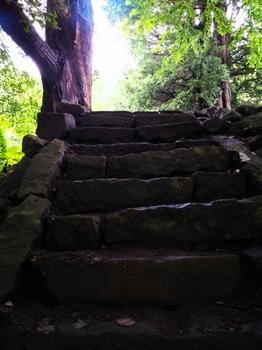 静かな階段