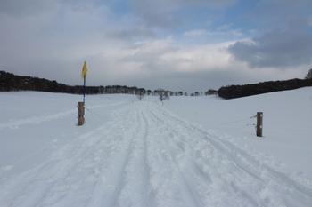 クロスカントリー雪原