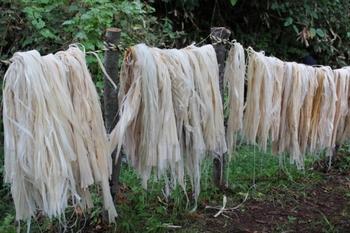 シナノキの繊維を乾かす