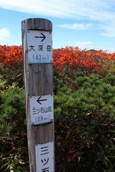 三石山山頂付近紅葉 2016